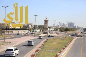 بلدية الخبر تستكمل تجميل المدينة بزراعة أكثر من 4،5 مليون زهرة