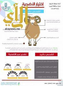 بلدية الجبيل تنهي استعدادها لاستقبال عيد الأضحى المبارك