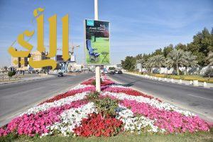 بلدية الخبر تزرع أكثر من 106 آلاف شجرة لتعزز الغطاء الأخضر في بالمدينة