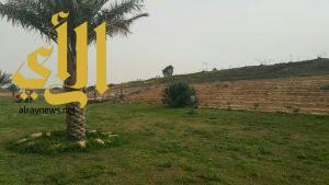 بلدية اللهابة تستعد لاستقبال إجازة الربيع بتأهيل وتجهيز منتزه الملك سلمان والحدائق