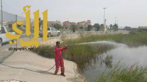 بلدية راس تنورة ترش مواقع تجمعات مياه الامطار