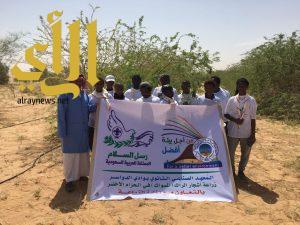 كشافة المعهد الصناعي الثانوي بوادي الدواسر يزرعون شجر الأراك شمال المحافظة