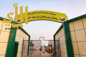 إطلالة حديقة الأمير سلطان بن سلمان على شفاء تهامة تستهوي المصطافين والزوار