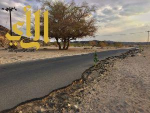أهالي قرى الحية بطريب يعانون من الطرق المتهالكة ونقص الخدمات البلدية