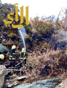 مدني الباحة يسيطر على حريق بغابة خيره