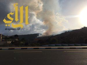 الدفاع المدني يكافح حريق في غابة شمال بللسمر