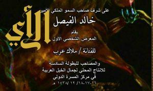 التشكيلية ملاك العرب تقيم معرضها الفني الأول عن الخيل العربية