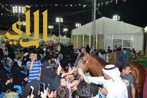عروض الخيل العربية الأصيلة في مهرجان ربيع مكة