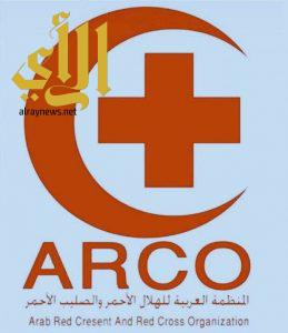 المنظمة العربية للهلال الأحمر والصليب الأحمر تؤكد أن استهداف البلد الحرام استفزاز للأمة الإسلامية
