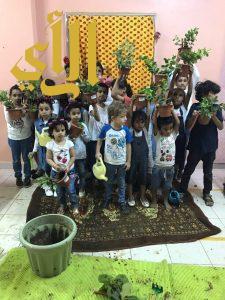"""""""أفياء وظلال"""" برنامج للإهتمام بالنباتات والبيئة ينظمه نادي حلم جازان"""