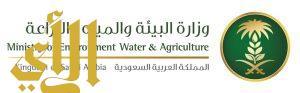 «البيئة» تبدأ أعمال التخصيص في ثلاثة مشاريع لمحطات معالجة الصرف الصحي