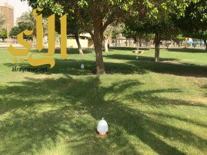 """رئيس بلدية الخبر يطلق """" رحمة """" لسقيا الطيور في الأماكن العامة"""