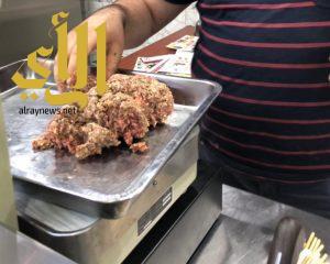 زراعة 320 ألف زهرة و 964 زيارة لمنشآت غذائية نفذتها بلدية وسط الدمام خلال رمضان الماضي