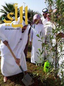  محافظ الحجرة يدشن اسبوع الشجرة ومبادرة نُشَجِّر معًا لمملكة خضراء 