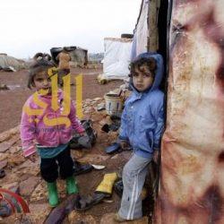 اللاجئون الصغار