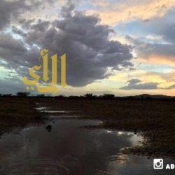 الحفاير – عدسة عبدالعزيز أبو ظهير