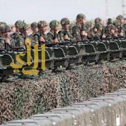 الهِبة السعودية للبنان