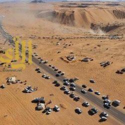 احتفالات مصر بعد تنحي مبارك