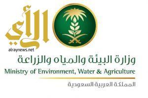 وزارة البيئة والمياه والزارعة تعلن عن إصابة عدد من الطيور بمرض إنفلونزا الطيور (H5N8)