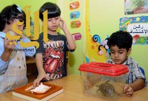 """تدريب 45 متخصصة في رياض الأطفال لمواكبة برنامج """"التحول الوطني"""""""