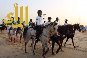 مزاد بطولة الشرقية للخيول العربية الأصيلة ينطلق اليوم